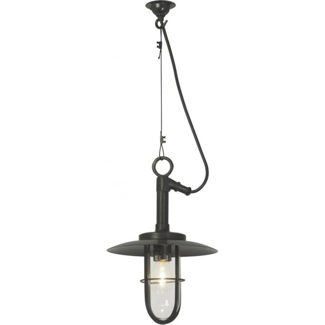 Davey Lighting 7523 Ship's Well Glass Pendant, Weathered Brass, Clear