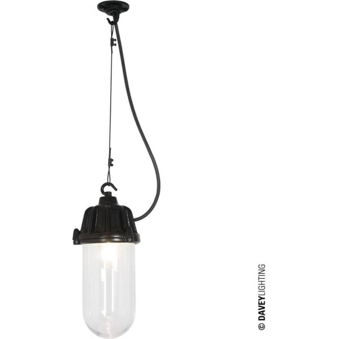 Davey Lighting 7674 Dockside Pendant, Black, Clear