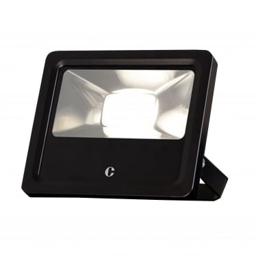 FL10 100W Flood Light