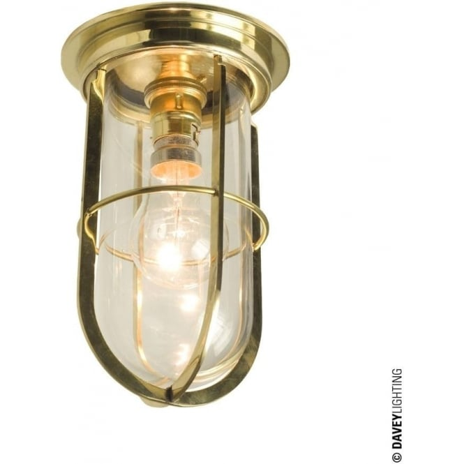 Davey Lighting 7203 Ship's campanionway light & Guard, Polished Brass, Clear glass