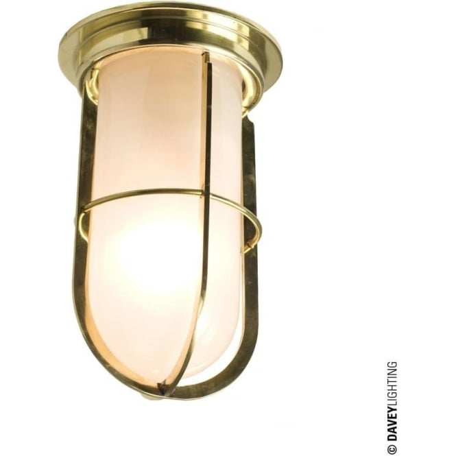 Davey Lighting 7203 Ship's campanionway light & Guard, Polished Brass, Frosted glass