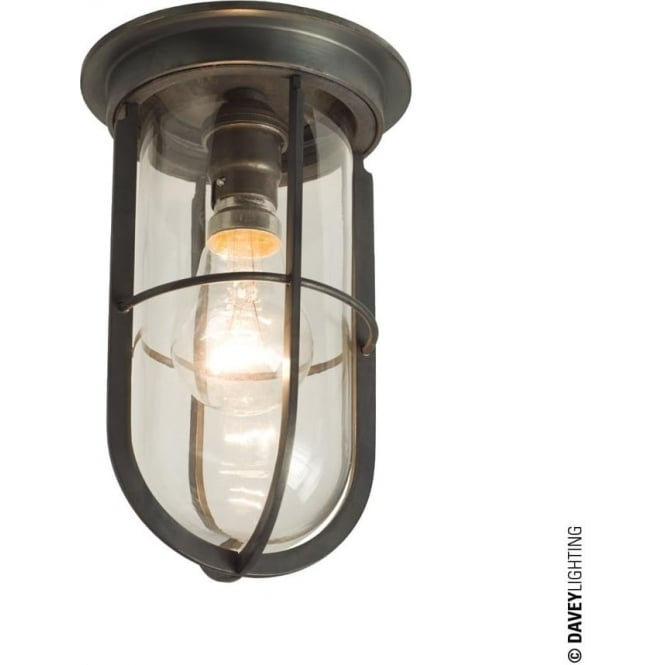 Davey Lighting 7203 Ship's campanionway light & Guard, Weathered Brass, Clear glass
