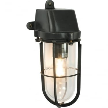 7401 Weatherproof Ship's Well Glass Light, Weathered Brass, Clear
