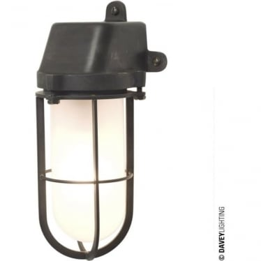 7401 Weatherproof Ship's Well Glass Light, Weathered Brass, Frosted