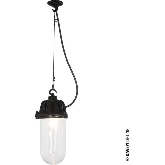 Davey Lighting 7674 Dockside Pendant, Black, Clear