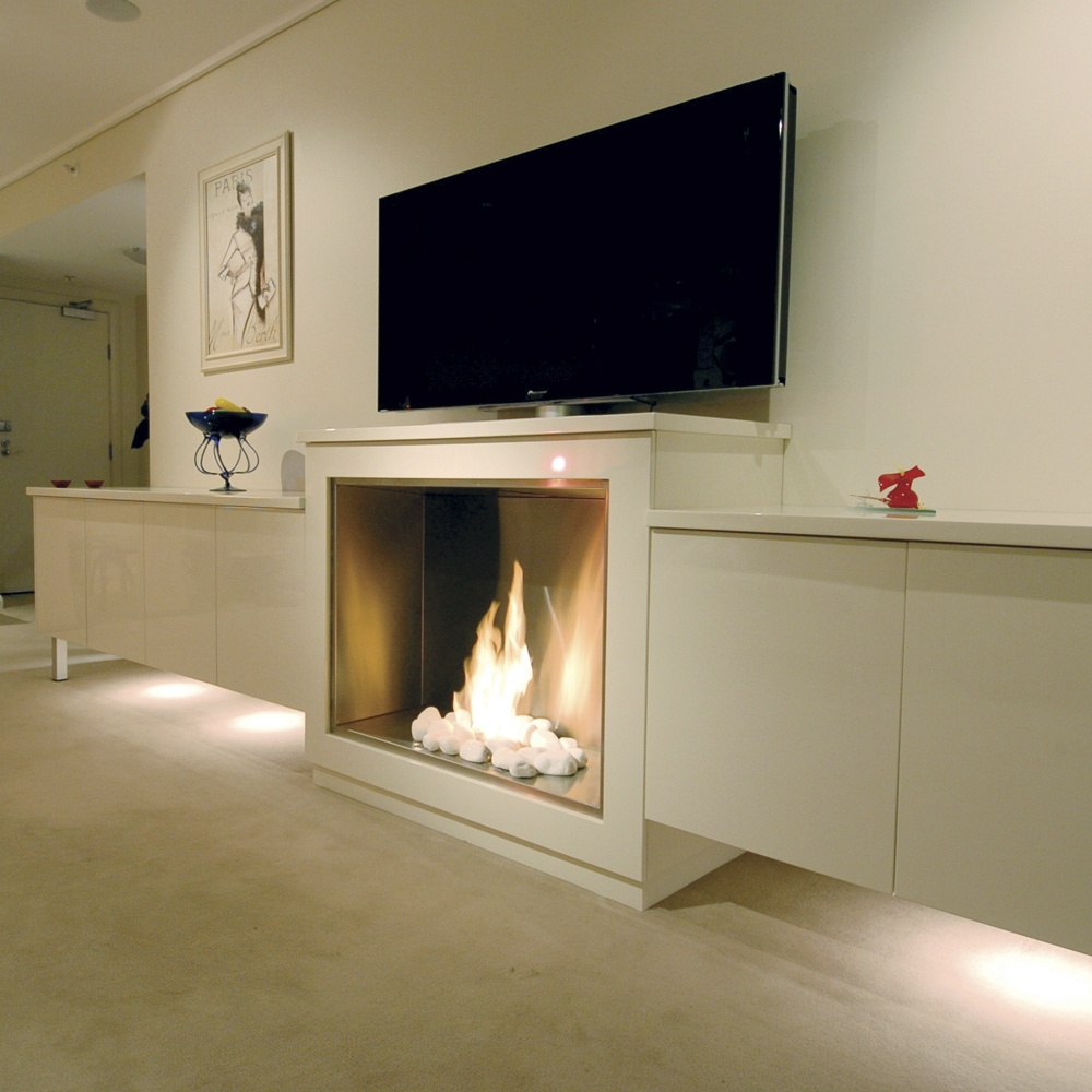 Buy EcoSmart Fire by Insert - Firebox 900SS from our Exterior Lights range - 1 year - @ Moonlight Design